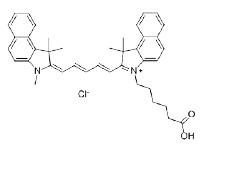 羧基类、羰基类染料解决方案----Lumiprobe实验室通用技术方案