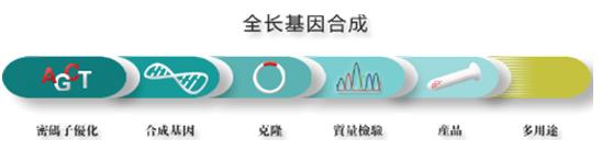 基因合成 质粒构建 点突变 西宝生物-专业技术服务-热线4000218158