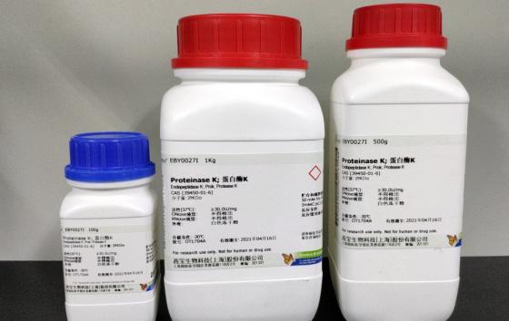蛋白酶K (源自林伯氏白色念球菌)